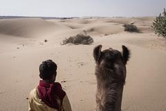 Rajasthan - Jaisalmer - Desert Safari with Camels-10