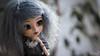 New Melba~ (MintyP.) Tags: pullip doll groove poupée paja rs fc fullcusto naekodolls futurebreeds pullipfanblog melba mintyp minty photography sony nex 6 wig mohair animal eyes