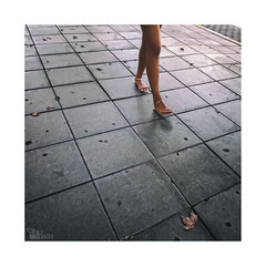 ... (ángel mateo) Tags: ángelmartínmateo ángelmateo elejido almería andalucía españa calle acera sandalias zapatos piernas bonitas baile movimiento hoja otoño cuadrados street sidewalk sandals shoes legs pretty dance movement leaf autumn square