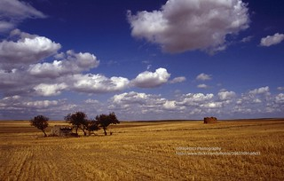 Between Palencia and Burgos, pigeon-houses - Explore