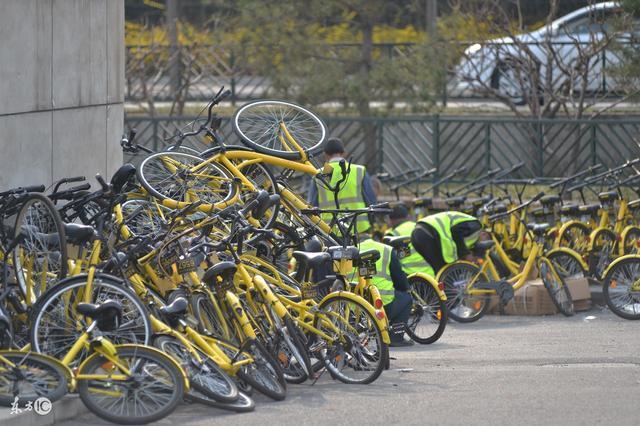共享單車:合併真是為盈利嗎?肯定不是醉翁之意吧?