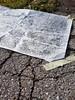 collecting cracks - work in progress (Ines Seidel) Tags: cracks break graphite paper workinprogress wip asphalt street strase drausen frottage risse