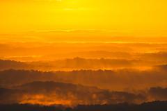 Sun Garden (axi11a) Tags: stonemountain atlanta clouds morning sky sunrise