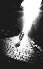 citylife (Rino Alessandrini) Tags: blackandwhite silhouette backlit people urbanscene monochrome outdoors blackcolor shadow city citylife oneperson highcontrast street sunlight travel lifestyles focusonshadow tonedimage dark biancoenero sagoma controluce persone scenaurbana monocromo ambientazioneesterna ombra città vitacittadina via lucesolare viaggi stilidivita viraggio scuro bicicletta strada bn bianconero diagonale