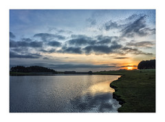 THE LAST STARLINGS OF THE DAY RETURNING TO CROWDY RESERVOIR (Barry Haines) Tags: zm leica m mount 35mm distagon f14 cornwall crowdy reservoir reflection flickrsbest sony a7r2 a7rii sky lake people wood water serene forest boat starlings murmuration
