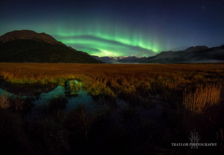 Moonlight and the Auroras