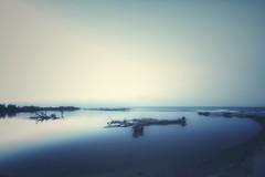 Serenity (lorenzoorsini2) Tags: beach sand tree albero wood tronco cloud sea landscape italy mouth foce samyang75 olympusomd5markii calabria fiume crati river