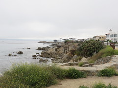 20160817 Californie Pacific Grove - (47) (anhndee) Tags: usa californie california pacificgrove