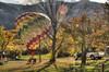 picking up a landed balloon (maryannenelson) Tags: colorado durango fall balloonrally hotairballoons autumn landscape sky
