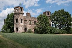 Pałac Tarłów w Podzamczu Piekoszowskim (WMLR) Tags: hd pentaxd fa 2470mm f28ed sdm wr pentax k1 pałac tarłów