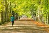 October2017 (raphael.dropsy) Tags: nature nikon park tervuren autumn forest people seasons tree brussels belgium