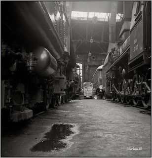 Oil and steel_Rolleiflex 3.5B