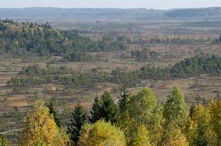 Torronsuo National Park - Kiljamo Scenic Tower