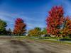 Autumn in Morris (kendoman26) Tags: hdr nikhdrefexpro2 niksoftware fuji fujifinepix fujifinepixf750exr autumn autumncolors fall fallcolors fallcolor morrisillinois