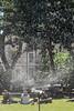 Sprinkler (pni) Tags: park water human being person people watering uk17 london uk england unitedkingdom pekkanikrus skrubu pni sprinkler