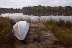 Edit -1-11 (Dane Van) Tags: ccr canadacreekranch atlantamichigan puremichigan fall autumn sunrise lakegeneva 5dclassic 35mmf2is