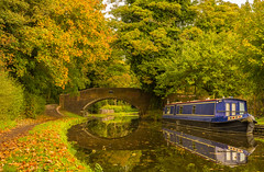 Autumn On The Staffordshire & Worcestershire Canal (williamrandle) Tags: colour stourton southstaffordshire staffordshire england uk autumn 2017 staffordshireworcestershirecanal waterways towpath bridge arch norrowboat water golden green tree trees reflections leaves nikon d7100 sigma1835f18art
