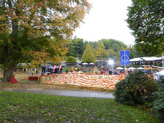 Kürbisfest pumpkin festival in Ludwigsburg (Spiranthes2013) Tags: kürbisfest kürbis ludwigsburg deutschland germany 2017 pumpkin pumpkinfestival badenwuerttemberg badenwürttemberg obstundgartenbauvereinerlenbachammain busfahrt busride