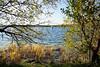 Kulkwitzer See in Leipzig (ingrid eulenfan) Tags: leipzig kulkwitzersee wasser baum windsurfen wassersport wellen sport windsurfing watersports water waves sports lake sigma1020mm sonya77ii 1020mm