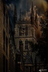 Southwark Cathedral (sandygortol) Tags: southwark cathedral london landschaft landscape himmel sky outdoor draussen samsung nx 3000 s1855csb stadt city gotische architektur romanische neugotik vereinigtes königreich building tree window tower