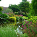 Pond at the Beth Chatto garden at Elmstead Market