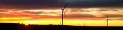 night moves... (HWW) (BillsExplorations) Tags: windmill windmillwednesday windfarm windturbine silhouette sunset sunrise rural country clouds sky illinois route92 ohio field progress energy wind