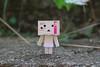 IMG_6574 (ccandyluv357) Tags: danbo danboard toys