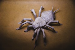 Wicked Awesome, 32 UnBOOlievable Halloween Origami Creations (Origami.me) Tags: origami papercraft papercrafts paper craft crafts diy fold folding halloween tarantula spider creepy spooky scary horror