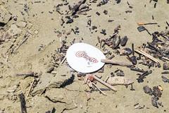 25012016-DSCF0507 (Paula Marina) Tags: areia beach decomposição iconografia lixo peruíbe praia sand summer verão