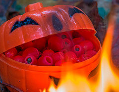 A Thousand Eyes of Newt... (fotofrysk) Tags: macromonday halloween pumpkin cauldron eyesofnewt treeberries flame fire berryboil canada ontario thornhill cityofmarkham afsmicronikkor105mm28ged nikon d7100201710296981