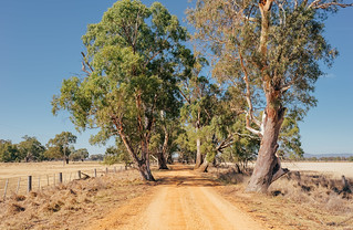 The Wimmera.