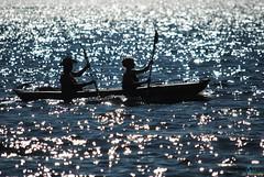 Kayaking in the ocean_(53) (Juergen__S) Tags: ships boats ocean sea water sail sailboat cruiser vacation croatia hrvatska kroatien urlaub meer wasser ufer shore paddleboat kajak kayak speedboat yacht touristboat