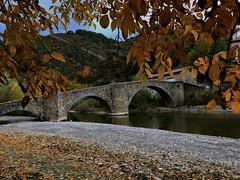 PUENTE ROMANO EN BURGUI (alexdealagon) Tags: burgui puente roncal romano otoño colores
