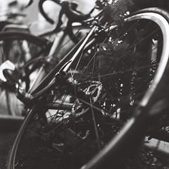Pend (Yosh the Fishhead) Tags: rollei rolleiflex rolleiflexautomat rolleiflexautomatmx carlzeiss carlzeissjena carlzeissjenatessar tessar carlzeissjenatessar75mmf35 film filmphotography filmnoir monochrome blackwhite blackandwhite bw tokyo japan bike bicycle dof bokeh tlr twinlensreflex mediumformat squareformat square 6x6