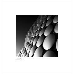 Selfridges building (Charlie Pragnell) Tags: bullring architecture birmingham selfridges contrast blackandwhite bnw squareformat modernarchitecture olympusuk