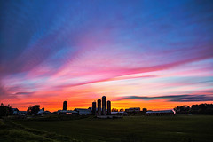 Neon Lights (Matt Molloy) Tags: mattmolloy timelapse photography timestack photostack movement motion summer colourful sky clouds trails lines neon pink light farm field barn silos countryside seeleysbay ontario canada landscape nature lovelife