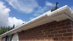Roofline, Fascia, Sofit, northampton, milton keynes, bedford41 (prestige for your home) Tags: roofline fascia soffit northamptonshire bedfordshire buckinghamshire