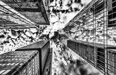 Skyscraper Frankfurt (MAICN) Tags: glass architektur building himmel mono gebäude clouds skyscraper bw 2017 blackwhite monochrome sw glas schwarzweis spiegelung sky frankfurt einfarbig hochhäuser wolken vhs