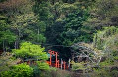 Arashiyama 嵐山 (kirainet) Tags: 嵐山 arashiyama