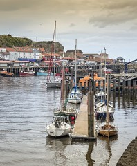 Whitby: Moored boats (jack cousin) Tags: nikon d610 on1photos whitby yorkshire coast waterfront seaside cliff travel holiday tourism jetty quay harbour harbor moored mooring masts sailboat dinghy