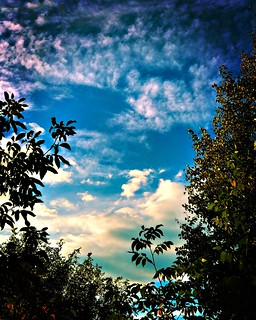 •Autumn Sky� 🌌
