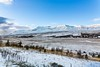 Mt. Sulur and Kerling (Einar Schioth) Tags: mtkerling mtsulur hrafnagil winter eyjafjordur trees tree day sky snow canon clouds cloud vividstriking blusky nationalgeographic ngc nature mountains mountain landscape photo picture outdoor iceland ísland ice einarschioth
