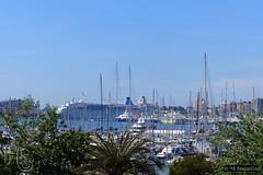 Mallorca '15 - Palma - 01 - Jachthafen 01 (Stappi70) Tags: urlaub spanien schiffe palmademallorca palma marina mallorca jachthafen boote e
