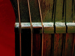 While my guitar gently weeps... (Giorgio Ghezzi) Tags: guitar chitarra macromondays memberschoicemusicalinstruments string corda