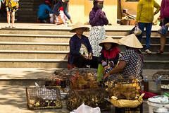 2017_04_09HoiAn34 (Andi [アンデイ]) Tags: vietnam hoian streetphotography street streetview people market travel travelphotography asia southeastasia seasia canon sigma sigmalens sigmaa