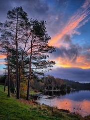 Early morning, Norway (Vest der ute) Tags: xt2 norway rogaland haugesund grass trees water waterscape landscape lake reflections sky clouds ducks outdoor earlymorning softlight fall autumn fav25 sunrise fav200
