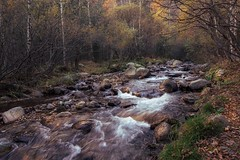 Río Ter (jlmontes) Tags: cataluña españa spain landscape paisaje cascadas rio longexposure largaexposicion setcases pirineos girona samyang14mm nikond3100