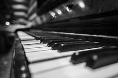 Klavier (michel1276) Tags: klavier instrument manualfocus vintagelens minolta minoltamd2428 bokeh