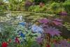 Claude Monet's water lily pond (julesnene) Tags: canon canon7dmark2 canon7dmarkii canonefs1755mmf28isusm claudemonet flower france giverny juliasumangil monet nymphéas commune flowers garden julesnene nature pond travel water waterlilies waterlilypond normandie fr