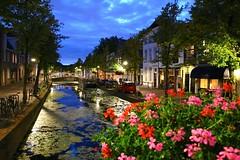 weekendje Delft - augustus 2017 (Kristel Van Loock) Tags: delft visitdelft indelft nederland thenetherlands visitthenetherlands niederlande holland olanda zuidholland southholland hollande paesibassi paysbas lespaysbas paísesbaixos lospaísesbajos delfttourism toerismedelft wwwdelftnl august2017 augustus2017 httpwwwhoteldeplataannl